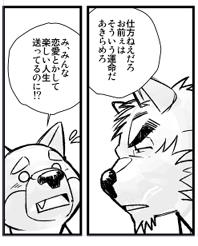 けもケット新刊予定~♪【市川和秀の福袋】